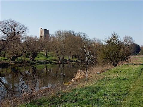 Cambridge Tutor Dog Park
